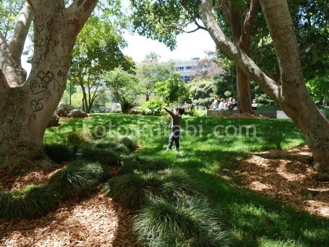 Yerba Buena Gardenの芝生