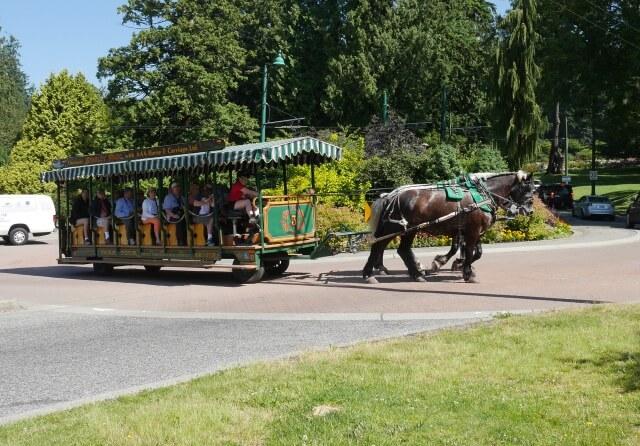 スタンレーパークの馬車ツアー