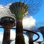 【シンガポール2018】無料で楽しむガーデンズ・バイ・ザ・ベイお散歩術