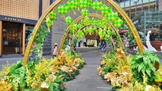 【クアラルンプール2019】パビリオン周辺の様子とMadam Kwan'sで初のナシレマ!